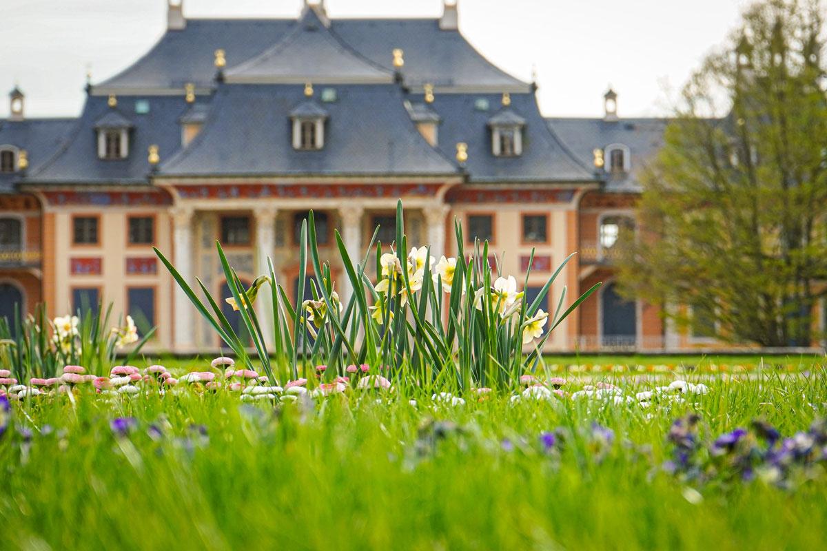 Ein Frühlingstag im Schlosspark Pillnitz